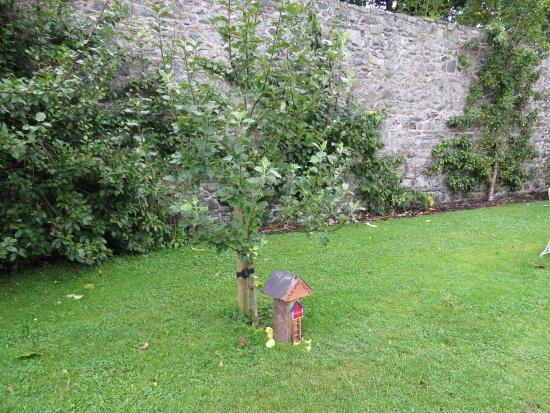 Condado de Dublin, Irlanda: Garden