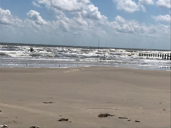 Padre Island National Seashore: photo8.jpg
