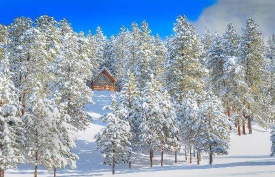 Mountain Home Lodge: Cabin Ponder Rock