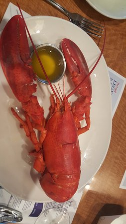 Legal Sea Foods : lobster 1.25 pounds