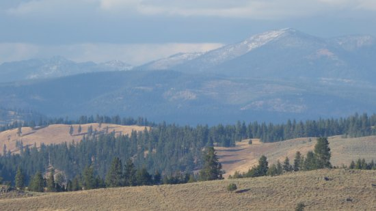 Greenough, MT: The view from the wedding site. This is why they call it Montana.