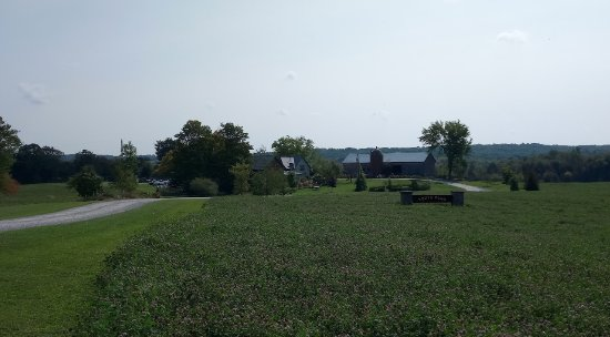Kawartha Lakes, Canada: View from the street