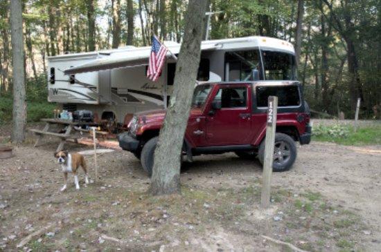 Buchanan, MI: Campsite back in the woods