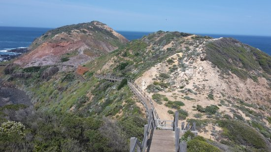 Cape Schanck Boardwalk: 20170923_111345_large.jpg