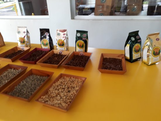Doka Estate Coffee Tour: variedades