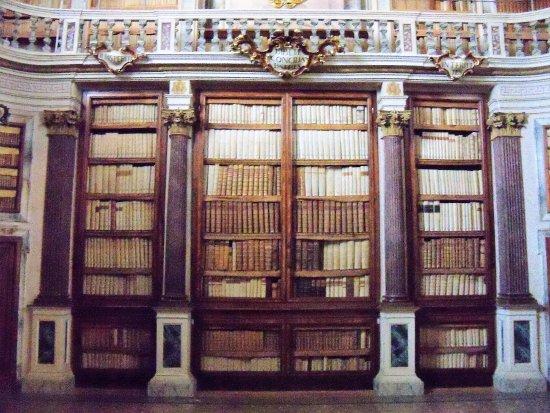 Bim Biblioteca comunale di Imola