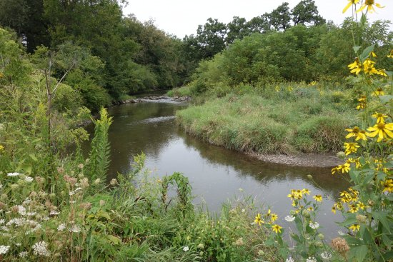 Saint Charles, IL: Creek behind the nature center