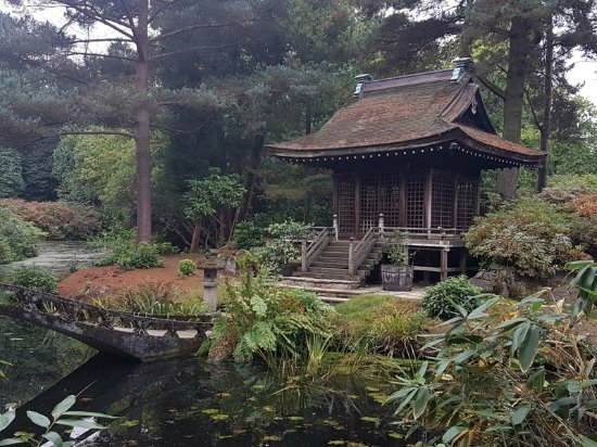 Knutsford, UK: Japanese garden