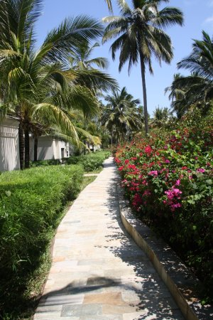 Foto Baraza Resort & Spa