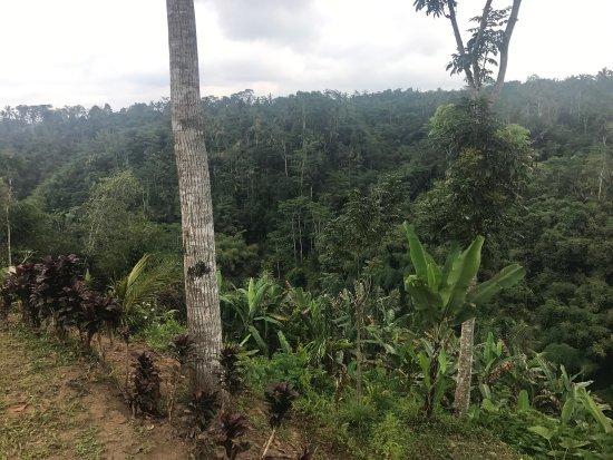 Τεγκαλάλανγκ, Ινδονησία: photo5.jpg