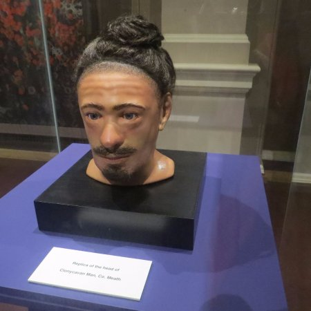 National Museum of Ireland - Archaeology: This is what Clonycavan man supposedly would have looked like.