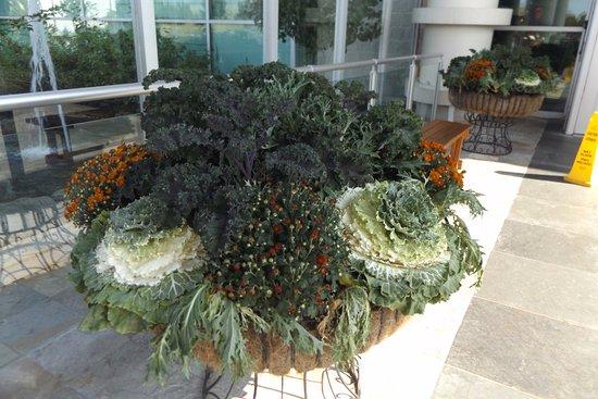 Mandarin Restaurant: Amazing planters