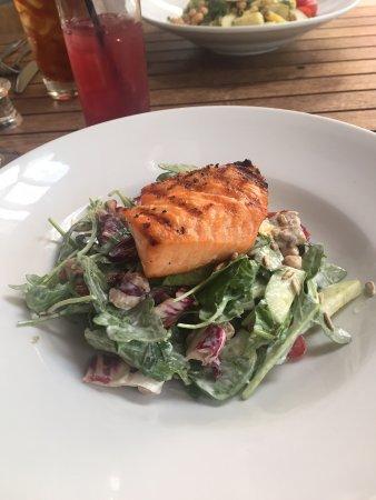 Davis, Califórnia: Salmon Salad