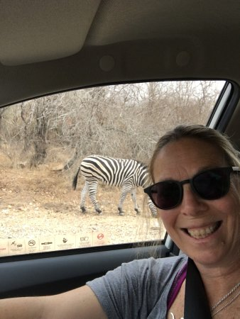 Marloth Park, South Africa: I finally found her.