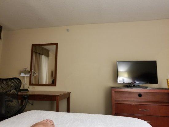 Дания-Бич, Флорида: Hilton Garden Inn Ft. Lauderdale Airport-Cruise Port
