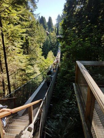 North Vancouver, Kanada: The suspension bridge