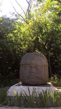 Parque Museo La Venta: photo0.jpg
