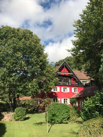 La Haute Grange : Front yard
