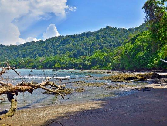 Carate, Κόστα Ρίκα: Los paisajes en el Parque Nacional Corcovado son únicos.