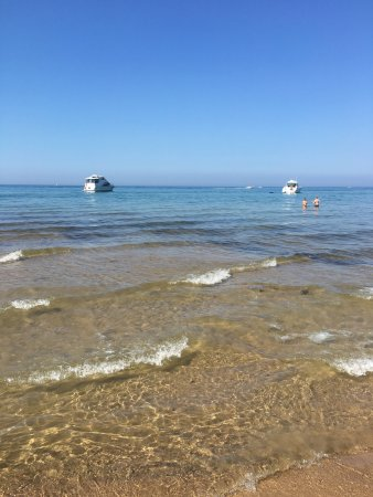 North Beach South Haven 2018 All You Need To Know Before Go