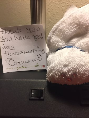 Hilton Garden Inn Greensboro: A thank you note and a washcloth bunny from housekeeping.