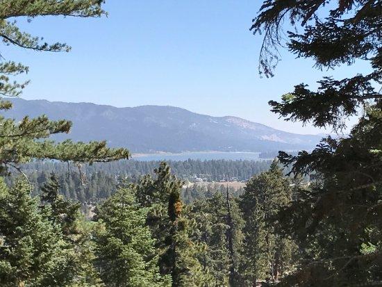 Castle Rock Trail: photo0.jpg