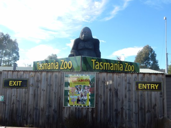 Riverside, Австралия:  Tasmania Zoo
