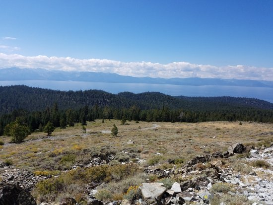Full Access Tahoe: A view from the top.