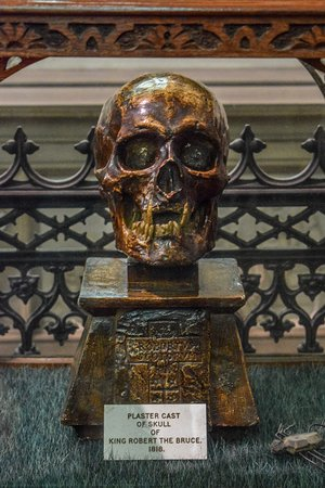 Dunfermline, UK: A plaster cast of the skull of Robert the Bruce displayed within the Abbey