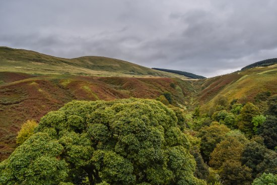 Dollar, UK: View of Ochil hills from the top of the tower.