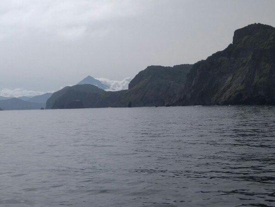תמונה מVilyuchik Volcano