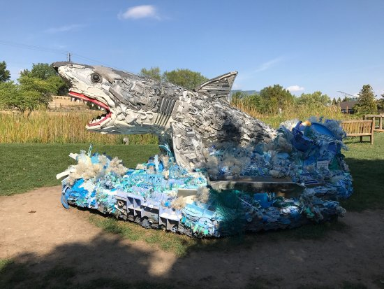 Ames, Айова: Beautiful water features and trash shark.