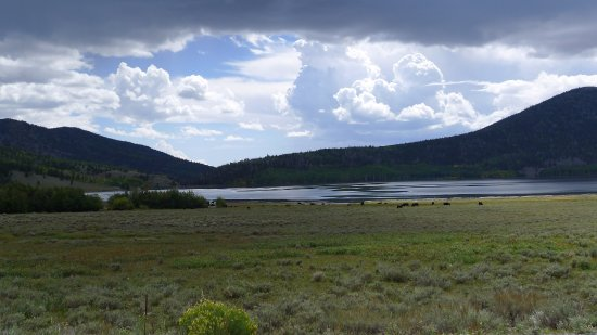 Richfield, UT: Fish lake National Forest