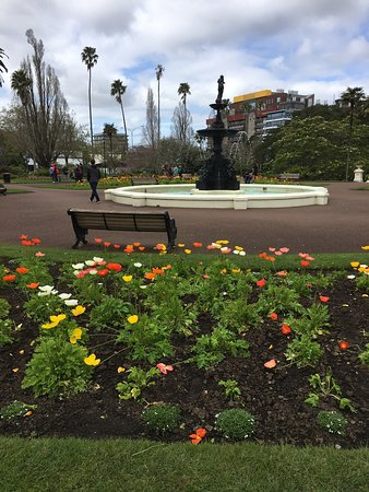 Auckland Free Walking Tours: photo1.jpg