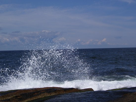 Rockport, MA: Ocean trail takes you down to the rocks where you can watch the wave action.