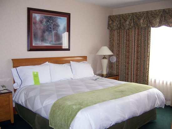 Moline, IL: Suite King Bed