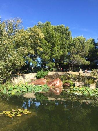 Le jardin de saint adrien servian le jardin de saint adrien - Les jardins de saint adrien ...