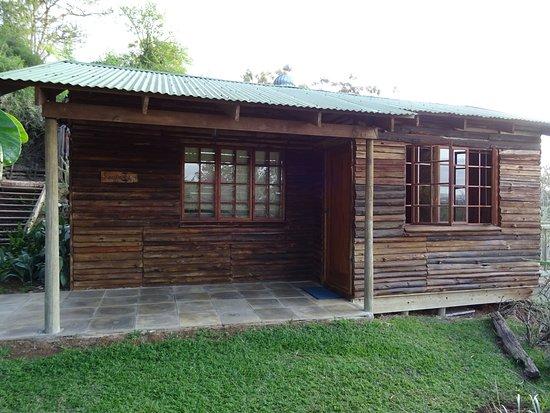 Addo, Güney Afrika: DSC01719_large.jpg