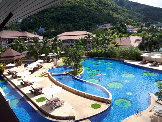 View from our poolside balcony room - Picture of Alpina Phuket ...