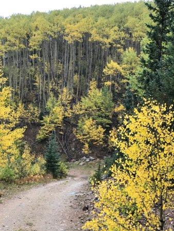 Aspen Vista Trail
