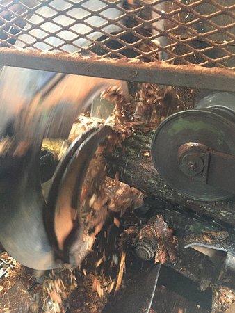 Monroe, Орегон: debarker in action