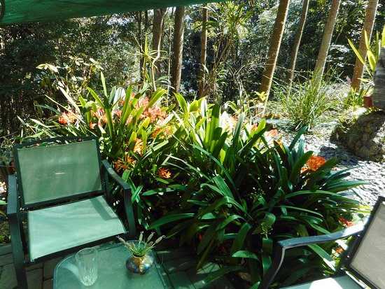 Mount Glorious Bed and Breakfasts