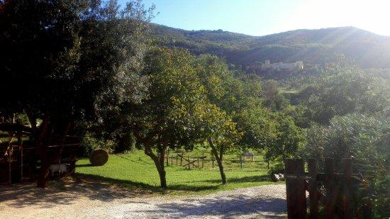Castelnuovo di Farfa, إيطاليا: Esterni dell'agriturismo