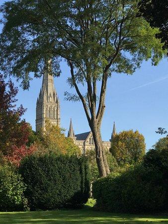 Salisbury, UK: view