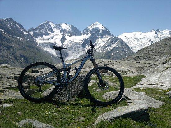 Silvaplana, سويسرا: Trek Remedy 9 al cospetto del Bernina