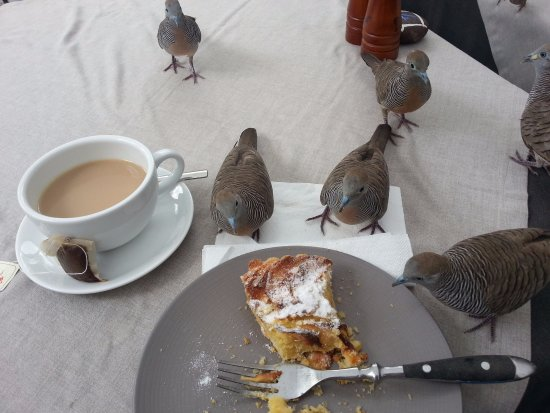 20 Degres Sud Hotel: Delicious cake served with afternoon tea!