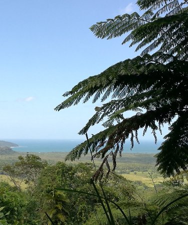 Cow Bay, Australia: vistas desde look Out Walu wugirriga