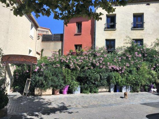 Elne, Frankrijk: Terrasse ombragée du restaurant