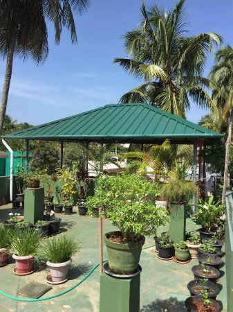 Heavenly Home Stay: Rooftop Terrace