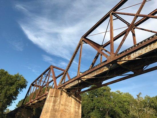 Lillington, Kuzey Carolina: photo1.jpg